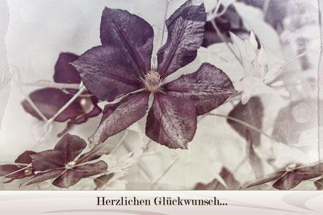 herzlichen-glueckwunsch-grusskarte-clematis