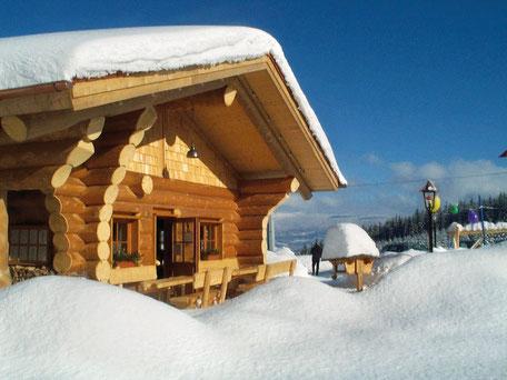Blutwurzhütte-Langlaufzentrum Jägerwald