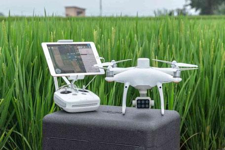 Foto e Video con Drone