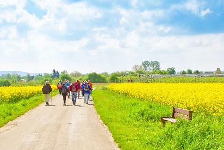 Gruppe von Wanderern im Wanderurlaub in Deutschland