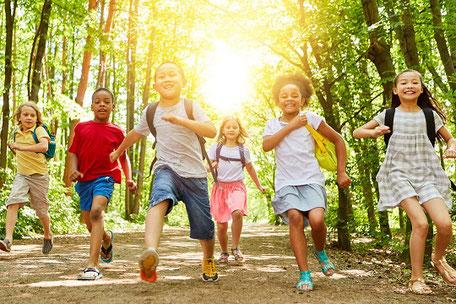 Kinder im Wald auf Klassenfahrt mit Schüler-Reiseschutz