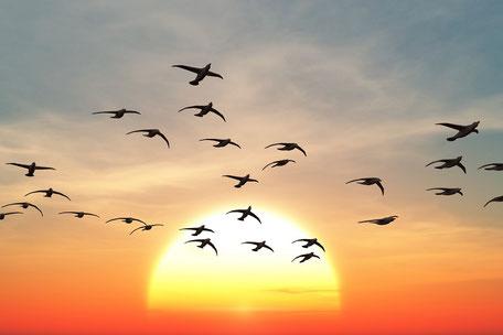 Zwei Urlauber sitzen mit nackten Füßen im Ostseesand, entspannt im Liegestuhl, dazwischen ein klein Tisch mit  Drinks als Synonym für die Jahres-Reiseversicherung mit Corona-Reiseschutz und Quarantäne