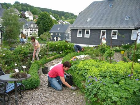 Pflege des Romantikgartens