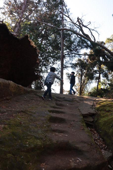 天園 ハイキング おんぶ 山歩き 冬 子ども colobockle コロボックル
