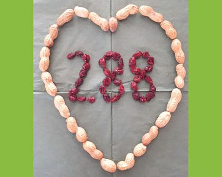 """Der Avartar """"288"""" steht für den Spendenstand seit Beginn der Aktion im Jahr 2016, heute bei 288.168 Euro!"""