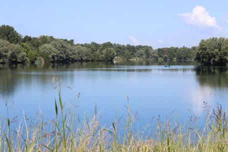 lac IKTUS Carpe