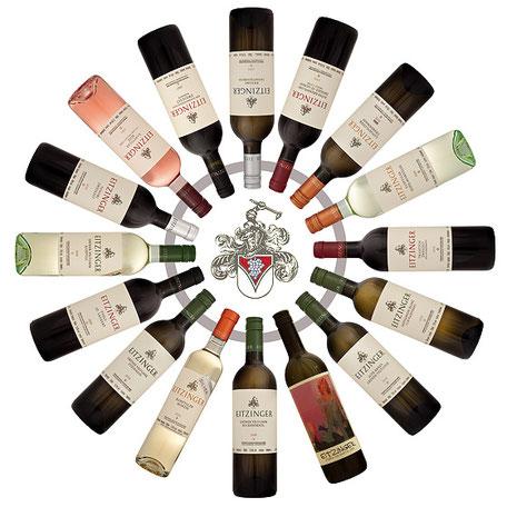 Weine vom Weingut Eitzinger aus Langenlois - Fa. Gabriele Knoflach-Eitzinger