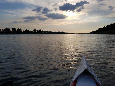 ROWonAIR rudern | AIRSKIFF beim Feierabend-Rudern auf dem Rhein