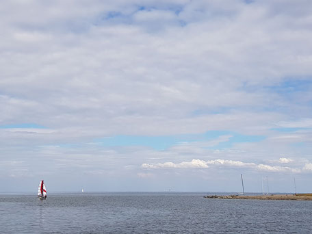 XCAT-Segelkatamaran | Schmetterlingssegeln vor dem Wind im Wattenmeer bei Sylt