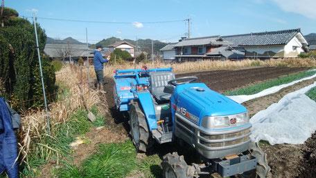 無肥料 無農薬 無堆肥 京都 亀岡 野菜