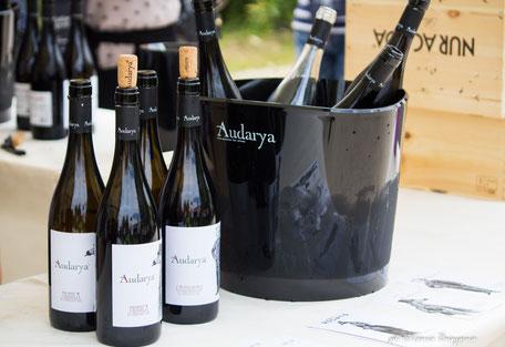 Сардиния вино