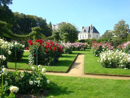 Gîte et hôtel près de Rennes (35)