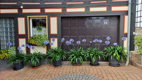 Bild: Geführte Radtouren