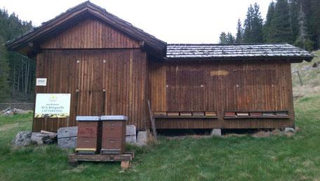 """Belegstelle Lattersteig, ca. 500 m entfernt der """"Franzlhütte"""", 5 km nördlich von Großreichenau/Albeck"""