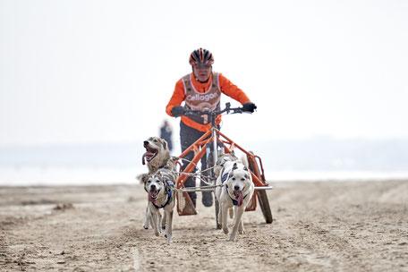 Musher Stefan Finzel genießt ein Fahrgefühl der anderen Art am Strand der Drei Kaiserbäder. - Foto: ExperiArts Entertainment - Karsten Diedrich