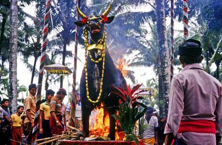 Totenverbrennung auf Bali - INDONESIEN