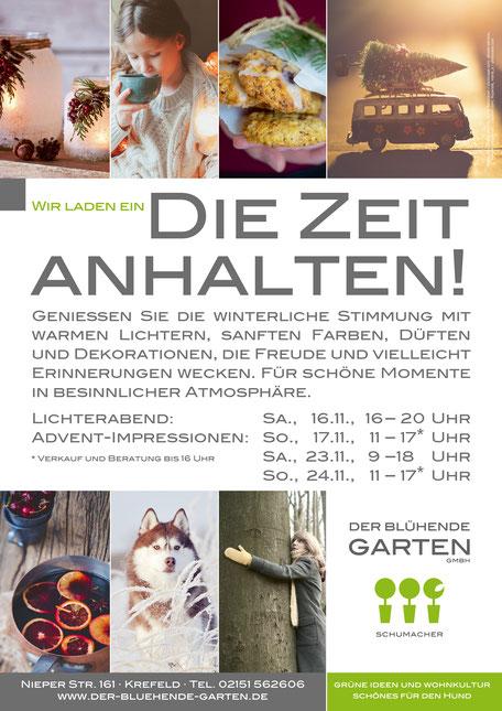 """Winterzeit und Advent – Ausstellungen im """"Der blühende Garten"""" und Hundeshop """"Schönes Hundeleben"""""""