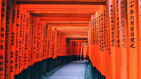 Fernreisen Reiseziele Japan
