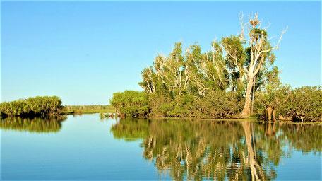 Reiseberichte Australien Kakadu Nationalpark