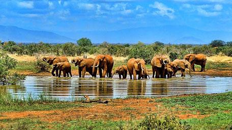 Fernreisen Vorschläge Südafrika