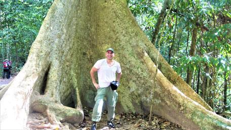Malaysia Tipps Taman Negara
