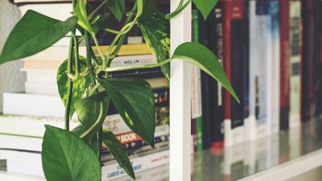 Soziale Beziehungen fördern die Gesundheit – nicht nur am Arbeitsplatz