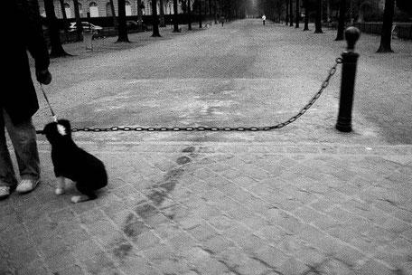 FRANCE / Paris / From the book 'Auftakt'. Champs de Mars, 2006