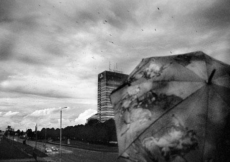 LATVIA / Riga / From the book 'Auftakt'. Birds flying above the city, 31.08.2007