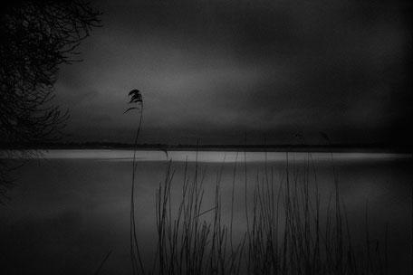 LATVIA / Jurmala / From the book 'Auftakt'. Meditation. Lielupe river, 2008