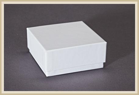 Einfrierbox oder auch Kryobox genannt.