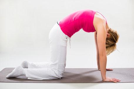 Die heilsamen Wirkungen von Marjariasana - Die Katze Yoga Akademie Nürnberg Yogalehrer Ausbildungen, Yoga Retreats