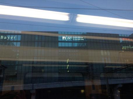 Direkte Nachbarn: Bayer und die Hochschule Nordwestschweiz