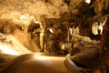 Sehenswürdigkeiten - Hato - Höhle   - Urlaub auf Curacao