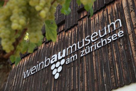 Das Weinbaumuseum am Zürichsee erklärt den Weinanbau und erzählt die Geschichte des Weins am Zürichsee.