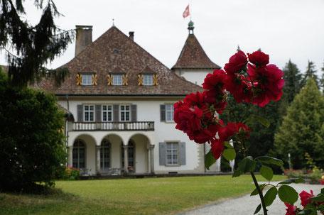 Das Tagungszentrum Schloss Au verzaubert an wunderbarer Lage mit moderner Tagungsinfrastruktur und guter Küche für Seminarteilnehmer.