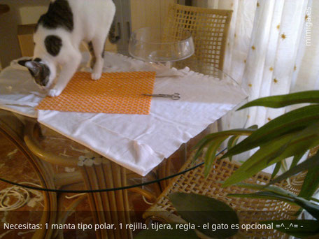 mi-miga-alfombra-olfativa-gatos_1