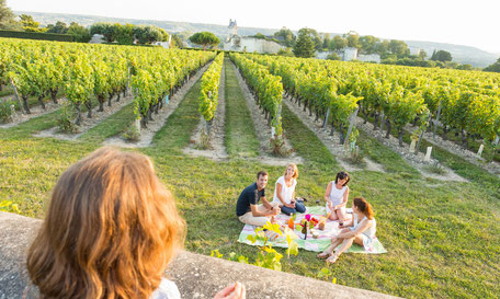 VinoLoire - Vincent Delaby - Excursions privilégiées dans les domaines vignobles du Val de Loire - Les extras - Pique-nique ©Stevens Frémont / ADT Touraine