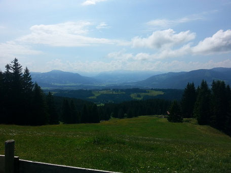 Ausblick vom Hauchenberg in die Allgäuer Hochalpen