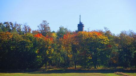 Südöstlich von Kleinschwarzenbach befindet sich die Kirchberganlage mit Gaststätte (derzeit geschlossen) und Aussichtsturm, von dem aus sich die ganze Region überblicken lässt.