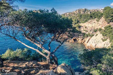 Niolon - Creek of Marseille