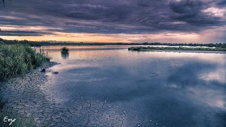 Parc ornithologique de pont de gau - Camargue - Heure Bleue - HDI