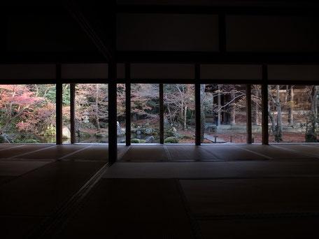 蓮華寺の書院から庭を見た画像