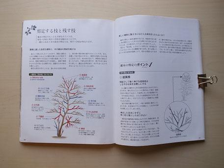 「手入れがわかる雑木図鑑」の剪定の基本とポイント解説