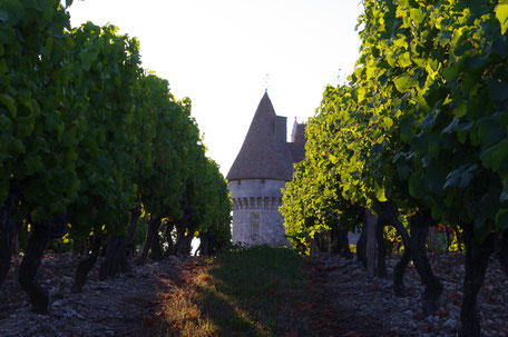 Monbazillac, gîte, Aeylis, Dordogne, Périgord, France