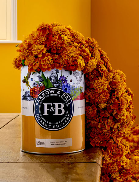 Farrow & Ball Colour by Nature Kollektion