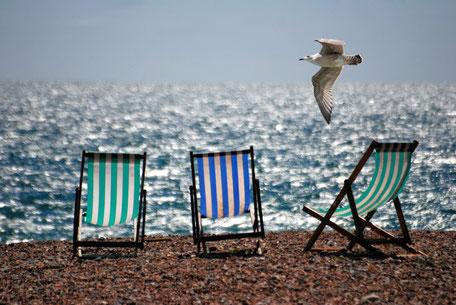 drei Liegestühle am Strand, darüber eine Möwe