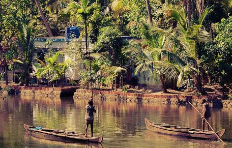 Kerala : les backwaters, ces canaux où l'on circulent en houseboats pour faire une croisière paisible et pleine de charme. Allepey est une oasis de paix et de nature au cours de ce circuit en Inde du sud.