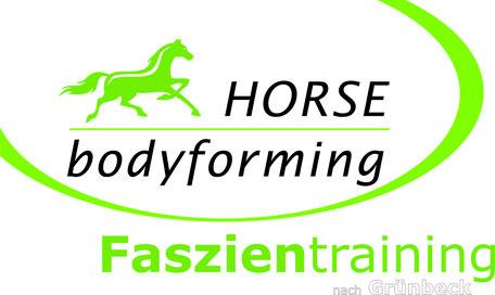 Dr. Laura KLingseisen-Bruun beim Doppellongetraining mit geschecktem Pferd