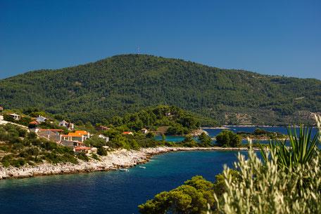 Schwimmen, Urlaub, Sonne, Kroatien, Bucht, Vela Luka