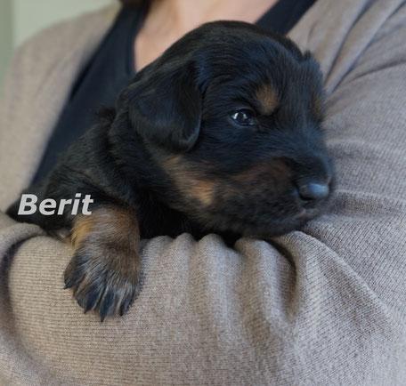 Berit - Name einer altirischen Lichtgottheit